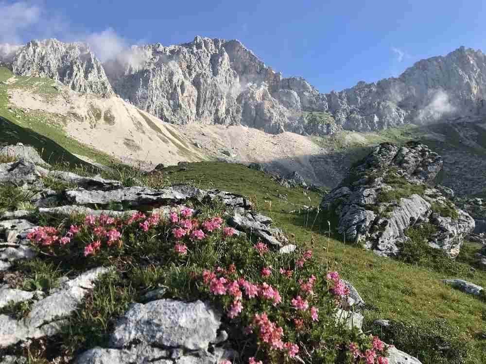 Zu den Wettersteingebirge Hütten wandern und die schönen Berge erleben!