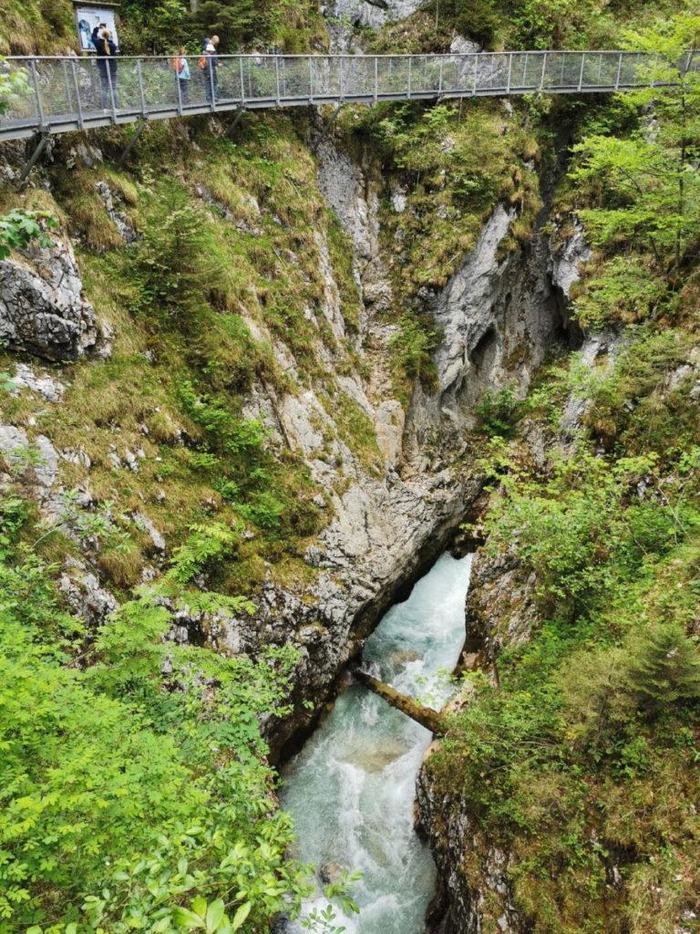 Der Steig aus Metallgittern führt dich oberhalb des Wassers durch die Leutaschklamm