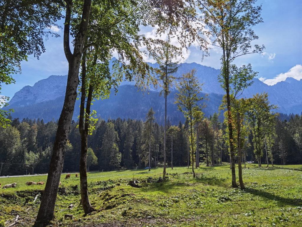 Blick auf das Wettersteingebirge auf der Badersee Wanderung zum Eibsee