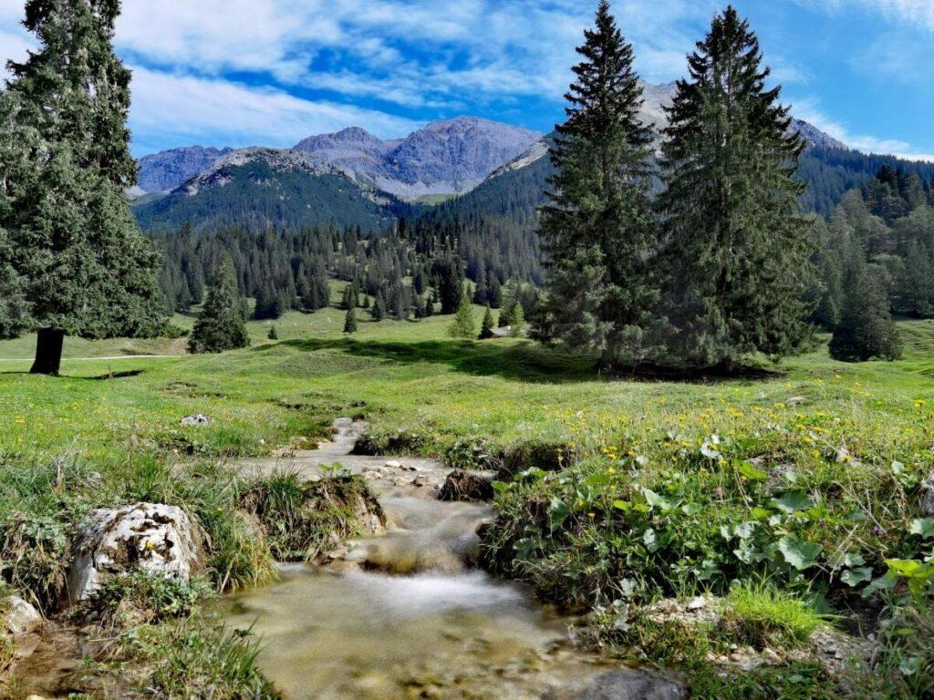 Wanderziel Gaistalalm - überragt von den Felsen des Wettersteingebirge